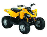 Can-Am DS  90 (08-..)