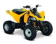 Can-Am DS 250 (06-..)