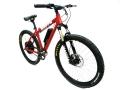Power E-Bike